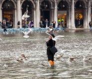 Alta marea a Venezia, Italia Immagine Stock Libera da Diritti
