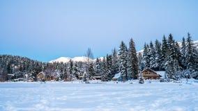 ALTA-MEER - Fluiter BC Canada Stock Foto
