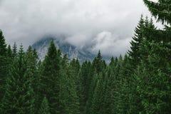 Alta montagna al giorno nuvoloso Bello paesaggio della natura Fotografie Stock