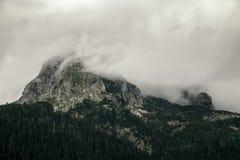 Alta montagna al giorno nuvoloso Bello paesaggio della natura Immagine Stock