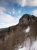 Alta montagna con gli alberi Fotografia Stock Libera da Diritti