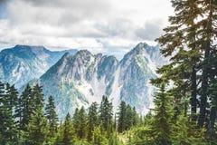 Alta montagna con la nuvola e la foresta verde Fotografia Stock
