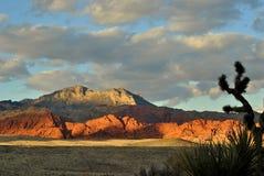 Alta montagna del deserto Fotografia Stock Libera da Diritti