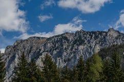 Alta montagna di estate Fotografie Stock Libere da Diritti