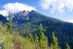 Alta montagna di estate Fotografia Stock