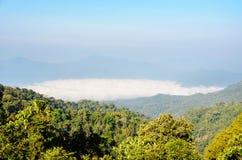 Alta montagna e nebbia di mattina Immagine Stock Libera da Diritti