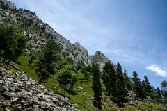 Alta montagna, foresta e cielo Fotografie Stock