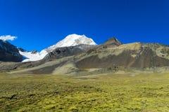 Alta montagna innevata nelle Ande Immagine Stock