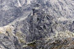 Alta montagna in Polonia. Immagine Stock