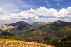 Alta montagna in Polonia. Immagini Stock