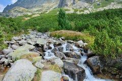 Alta natura di Tatras Immagine Stock Libera da Diritti
