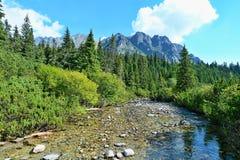 Alta natura di Tatras Fotografia Stock