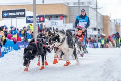 Alta, Norvège - 03 10 2017 : Course 2017 de traîneau de chien de Finnmarksløpet image stock