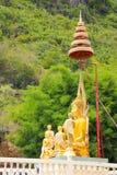 Alta pettinatura di Buddha con l'albero verde Immagine Stock