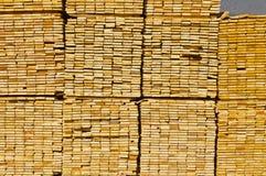 Alta pila di legname di secchezza Fotografia Stock