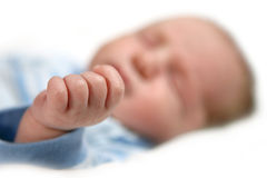 Alta profondità dell'immagine del campo di una mano dei neonati Fotografia Stock
