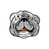 Alta qualità di progettazione del fronte del bulldog di vettore illustrazione vettoriale