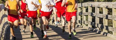Alta raza del campo a través de los escolares que pasa un puente Foto de archivo