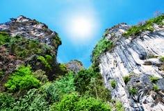 Alta roccia con gli alberi Vista dal basso Immagine Stock