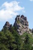 Alta roccia di pietra in una foresta verde Fotografia Stock