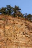 Alta roccia rufous degli alberi del ginepro e dell'arenaria che crescono sulla sua cima Fotografie Stock Libere da Diritti
