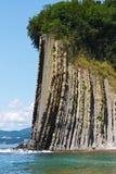 Alta roccia stupefacente con una foresta alla cima dal mare Roccia Kiselev Fotografie Stock