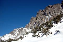 Alta scena 3 di Tatras Immagini Stock