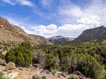 Alta scena del deserto con neve nel fondo Fotografia Stock