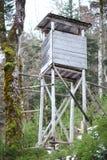 Alta sede di legno Fotografie Stock Libere da Diritti