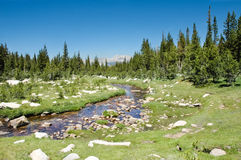 Alta sierra flusso Fotografie Stock