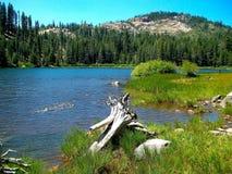 Alta sierra lago alpino Fotografie Stock Libere da Diritti