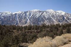 Alta sierra montagne Fotografie Stock Libere da Diritti