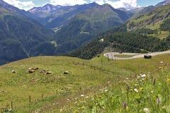 Alta strada alpina del Grossglockner Fotografia Stock