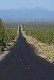 Alta strada principale del deserto Immagini Stock