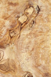 Alta struttura dettagliata del bordo di legno verde oliva Fotografia Stock