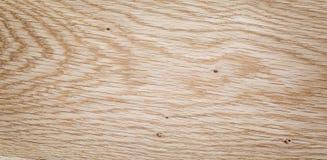 Alta struttura dettagliata della quercia naturale Fotografia Stock Libera da Diritti