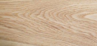 Alta struttura dettagliata della quercia naturale Fotografia Stock