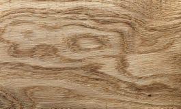 Alta struttura dettagliata della quercia naturale Immagini Stock Libere da Diritti