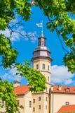 Alta torre del castello Nesvizh e del fogliame Fotografia Stock Libera da Diritti