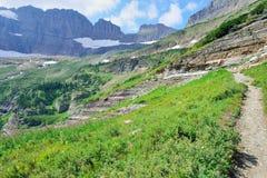 Alta traccia alpina al ghiacciaio in Glacier National Park, Montana Fotografia Stock