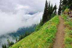Alta traccia alpina e nebbia pesante in Glacier National Park Immagine Stock Libera da Diritti