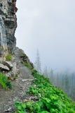 Alta traccia alpina e nebbia pesante in Glacier National Park Fotografia Stock