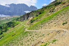 Alta traccia alpina in Glacier National Park, Montana Immagine Stock Libera da Diritti
