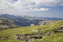 Alta tundra alpina Immagini Stock