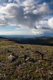 Alta tundra alpina Fotografie Stock