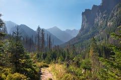 Alta valle di Bielovodska - di Tatras Fotografia Stock