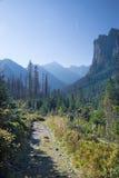 Alta valle di Bielovodska - di Tatras Immagini Stock Libere da Diritti