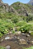 Alta valle di Gveleti, montagne di Caucaso, Georgia Fotografie Stock Libere da Diritti