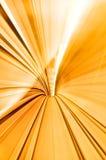 Alta velocità nel tunnel Fotografie Stock Libere da Diritti