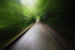 Alta velocità sulla strada con gli alberi Immagine Stock
